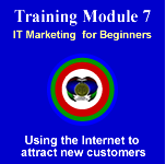 Module 7 - IT Marketing Strategies